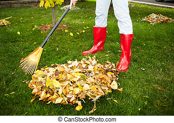 Fall leaves with rake - Woman in red boots raking Fall ...