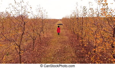 Woman in red coat and with umbrella walking alone between...