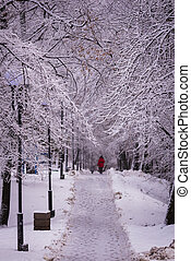 Woman in red with dog on winter alley in park on a snowy day