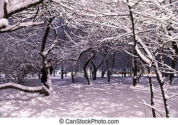 Woman in snowy winter evening park