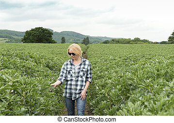 Woman in Sunglasses Inspecting Plant in Huge Field