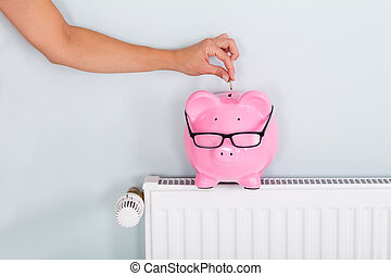 Woman Inserting Coin In Piggy Bank Kept On Radiator