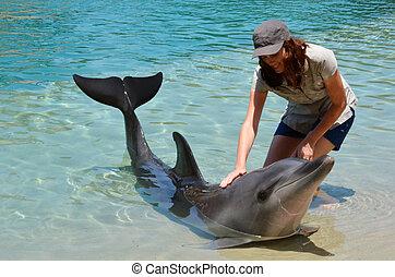 Woman interact with Dolphin in Sea World Gold Coast Australia.