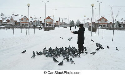 Woman is feeding a flock of pigeons