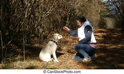 Woman is feeding dog with hands