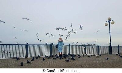 Woman is feeding gulls on a seashore
