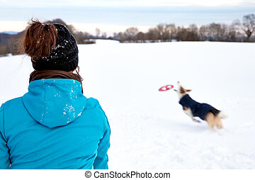 Woman is playing frisbee or flying disc with her dog in the snow