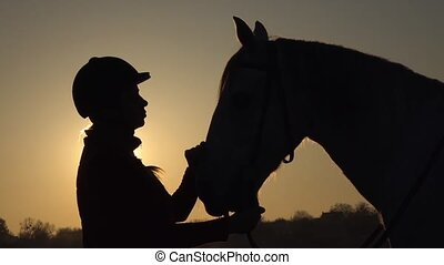 Woman is standing in the meadow and stroking the horse a beautiful sunset. Silhouette. Slow motion. Side view. Close up