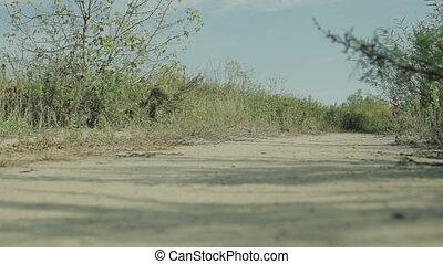 woman jogging HD