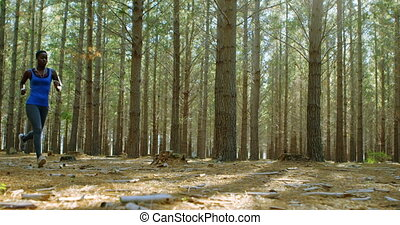 Woman jogging in the forest 4k - Low angle view of woman...