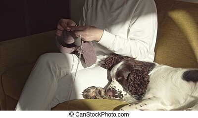 Woman knitting with dog on the couch - Woman knitting scarf ...