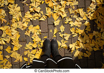 Woman legs in boots on the autumn ginko leaves.