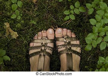 Woman legs in forest