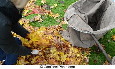 woman load barrow leaves