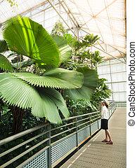 Woman looking at big palm tree
