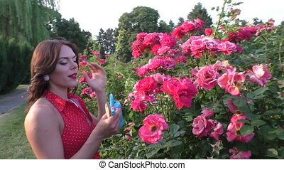 Woman looks after roses. - Woman looks after roses in a...