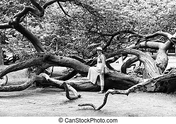 Woman near a tree in the park