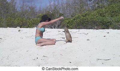 woman Nutria Otter sand Cuba - Cuba Caribbean island land...