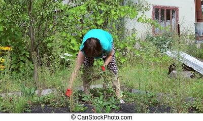 Woman on a garden field of weed strawberries. summer