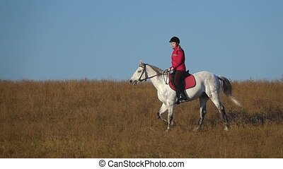 Woman on a horse outdoors in the field. Slow motion - Woman...