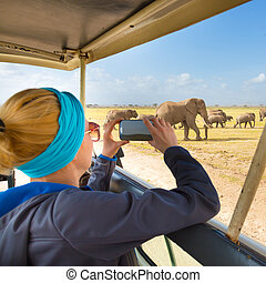 Woman on african wildlife safari. Lady taking a photo of herd of wild african elephants with her smartphone. Open roof safari jeep. Focus on elephants.