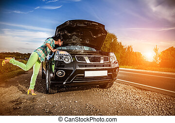 Damage to vehicle problems on the road.