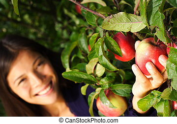 Woman picking apple from tree