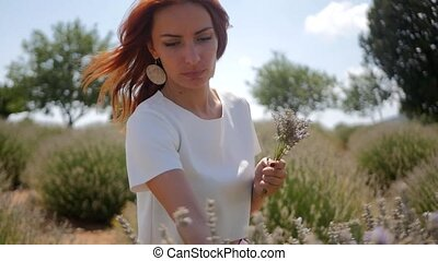Woman picking lavender flowers