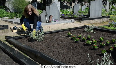 woman plant graveyard - Woman girl sit plants and flowers on...
