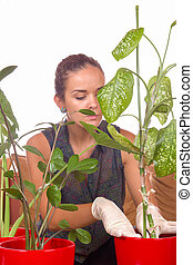 woman planting houseplants with gloves