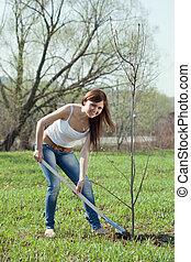 woman planting tree