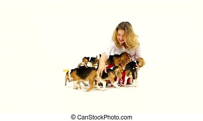 woman played with cute beagle puppy on a white on studio. Slow motion
