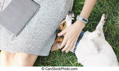 Woman playing with dog on grass