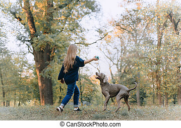 woman playing with weimaraner dog in the park