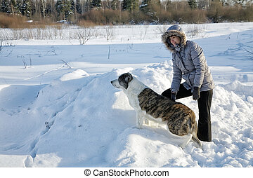 woman plays with a dog in the winter afternoon