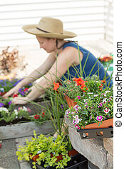 Woman potting plants on a hot spring day
