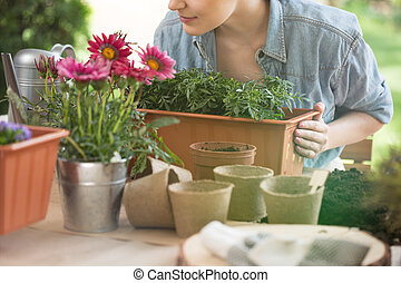Woman preparing flower for planting