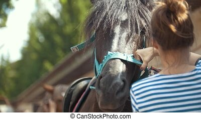 Woman puts a bridle on a horse at summer day