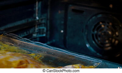 Woman putting chicken in oven for roasting