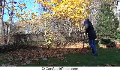 woman rake golden leaves