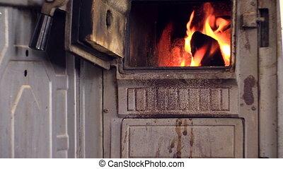 woman read book near fire
