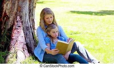 Woman reading a novel with her daughter in a park