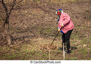 Woman removes leaves from the soil in the garden