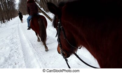 Woman ride horseback in forest at winter day, view from...