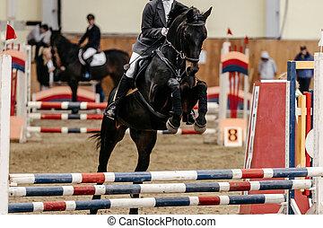 woman rider on horse