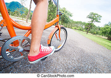 woman riding a bicycle in park