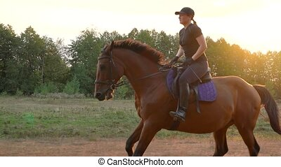 Woman riding horse by gallop at sunset. Horseback riding in...