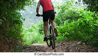 Woman riding Mountain Bike on forest trail