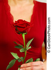 Woman rose - Woman in red holding a red rose
