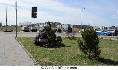 woman rubbish yard - woman gather leaves rubbish along the...